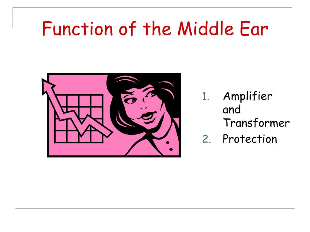 Function of the Middle Ear
