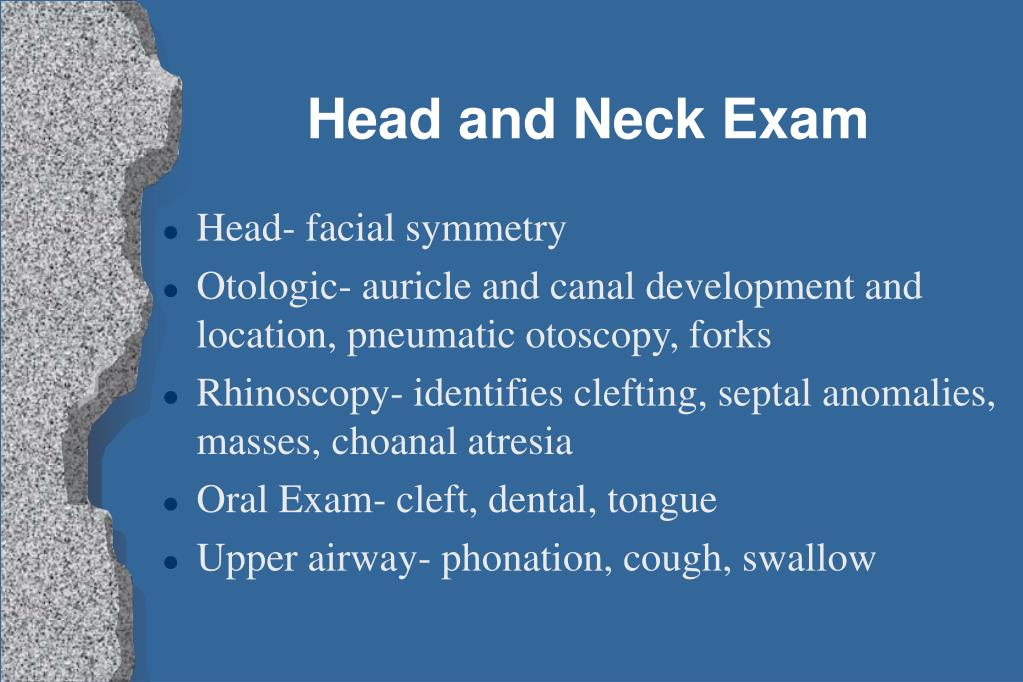 Head and Neck Exam
