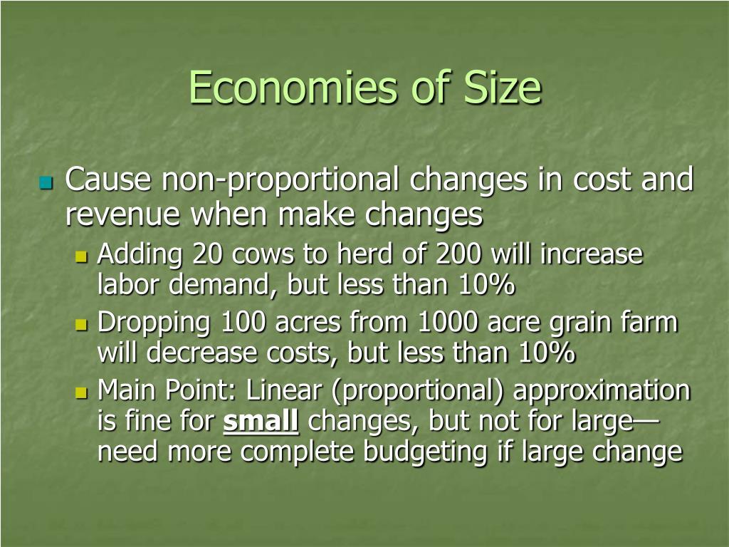 Economies of Size
