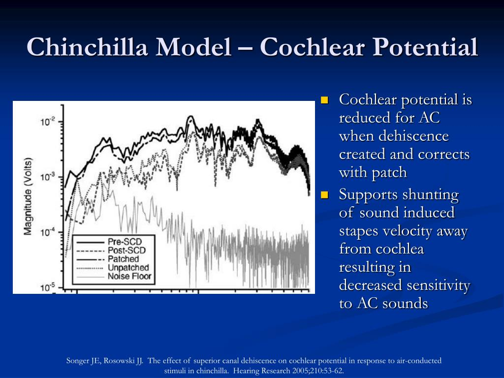 Cochlear potential is reduced for AC when dehiscence created and corrects with patch