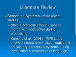 literature review4