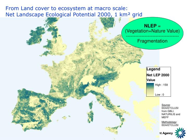 From Land cover to ecosystem at macro scale: