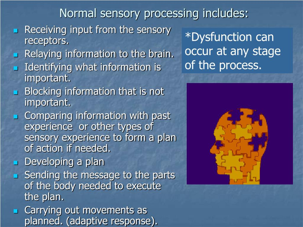 Normal sensory processing includes:
