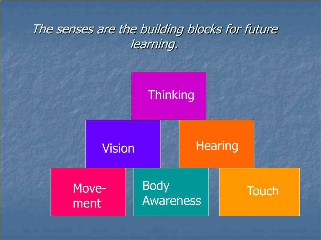 The senses are the building blocks for future learning.