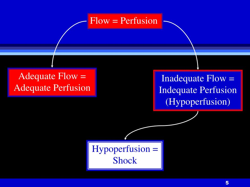 Flow = Perfusion