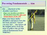 pre swing fundamentals aim