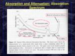 absorption and attenuation absorption spectrum