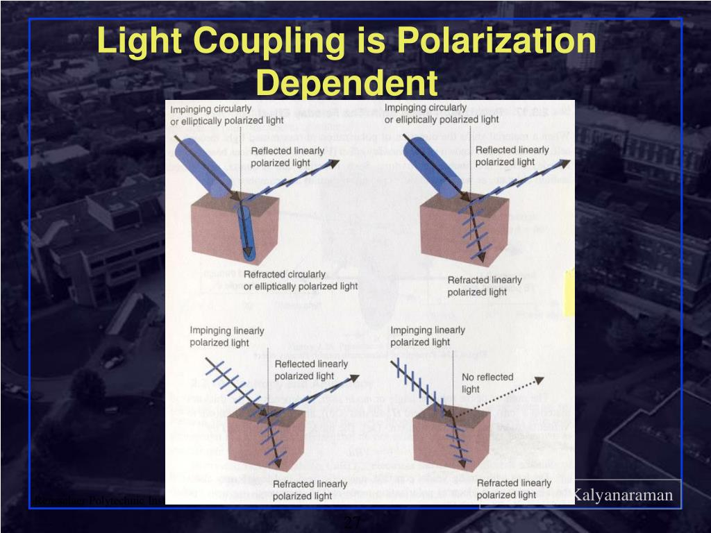 Light Coupling is Polarization Dependent