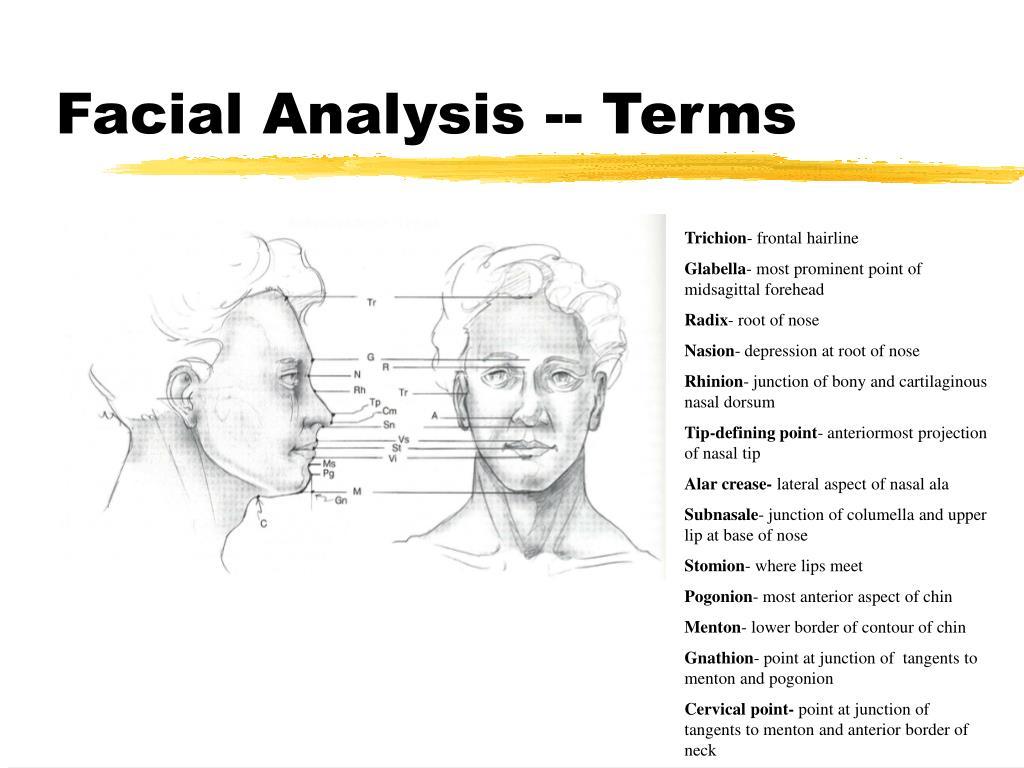 Facial Analysis -- Terms