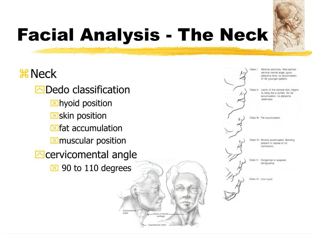 Facial Analysis - The Neck