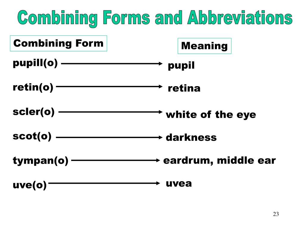 Combining Forms & Abbreviations (pupill)