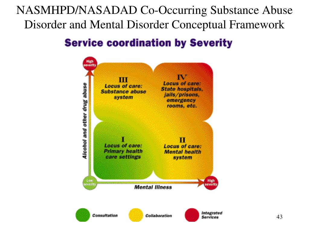 NASMHPD/NASADAD Co-Occurring Substance Abuse Disorder and Mental Disorder Conceptual Framework