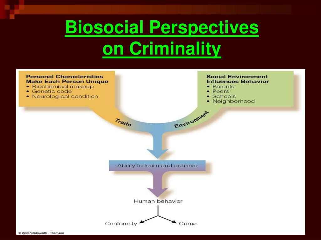 Biosocial Perspectives