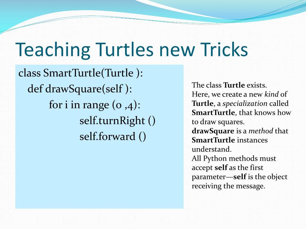 Teaching Turtles new Tricks