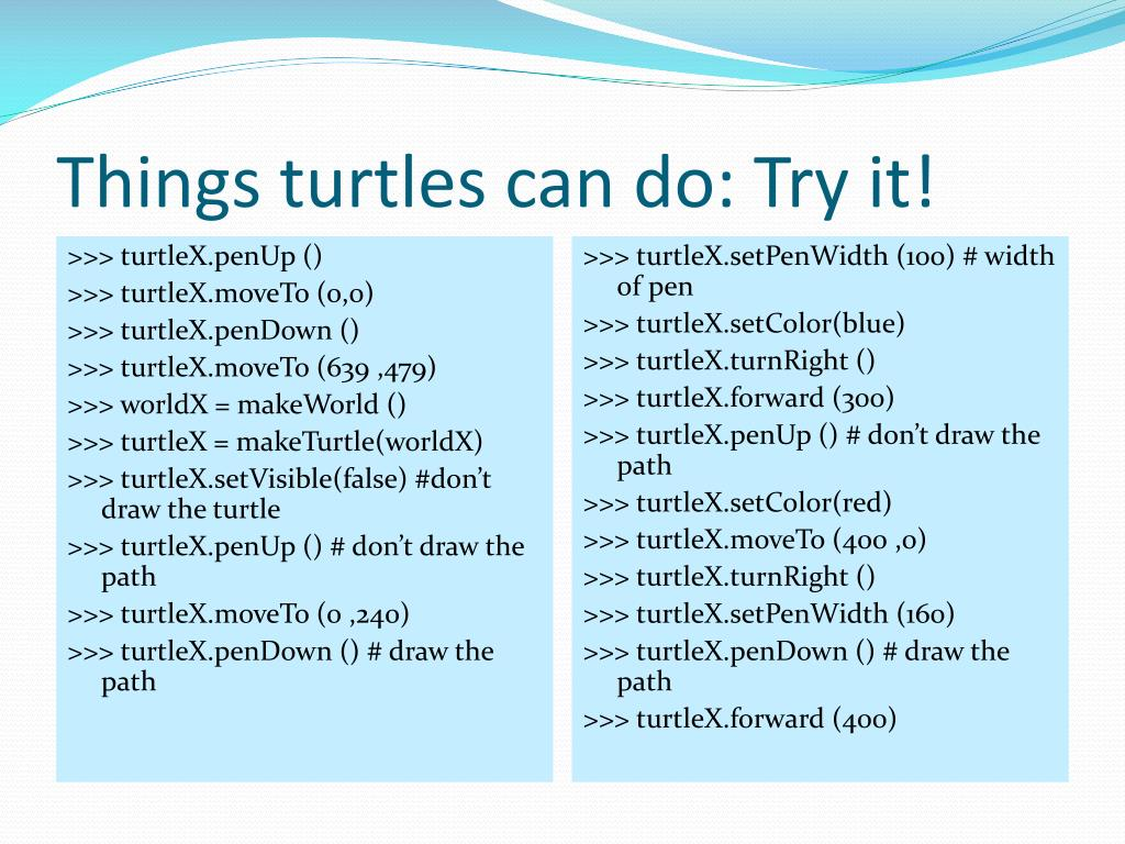 Things turtles can do: Try it!