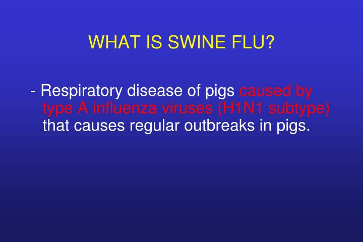 What is swine flu