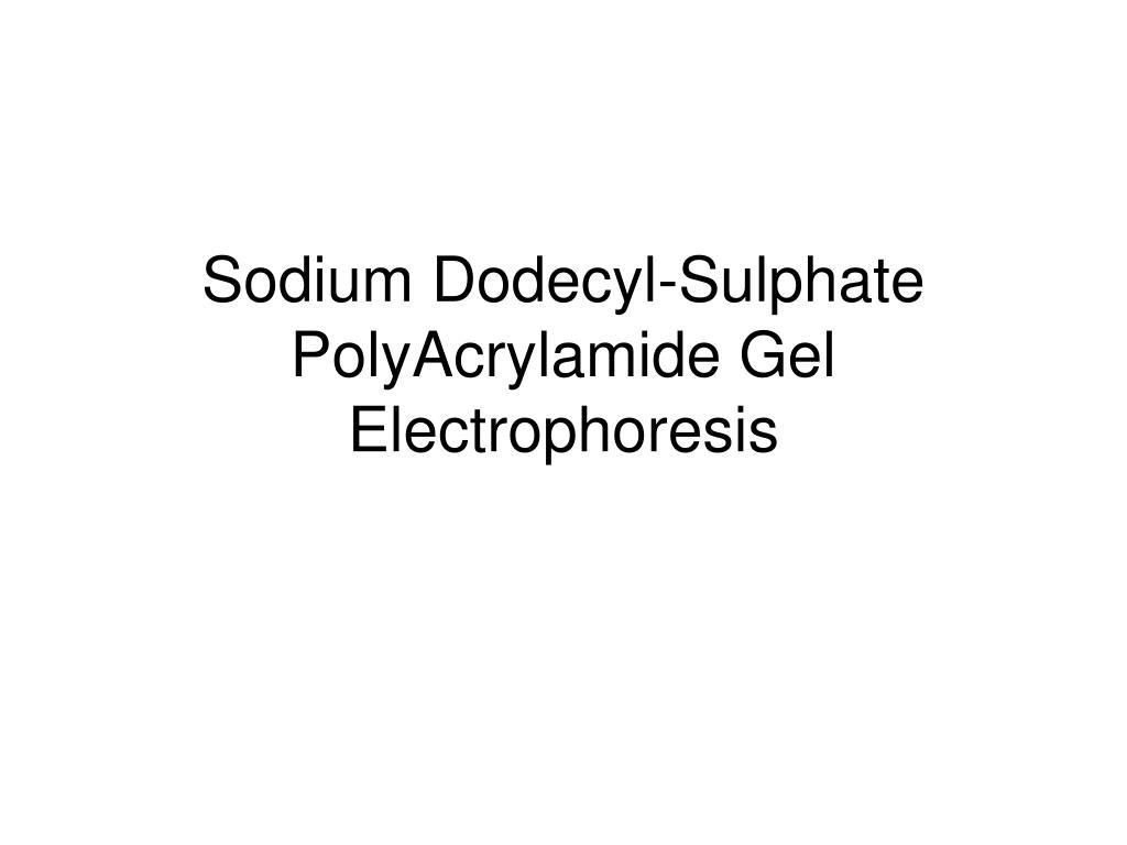 Sodium Dodecyl-Sulphate PolyAcrylamide Gel Electrophoresis