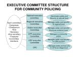 executive committee structure for community policing