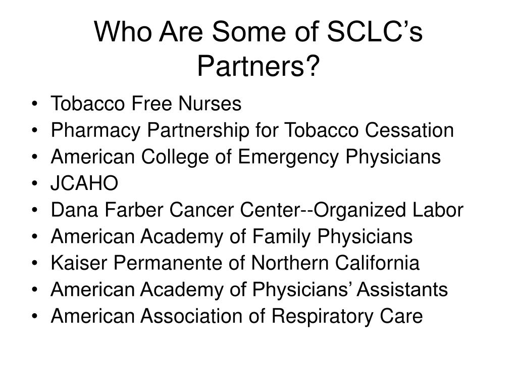 Who Are Some of SCLC's Partners?