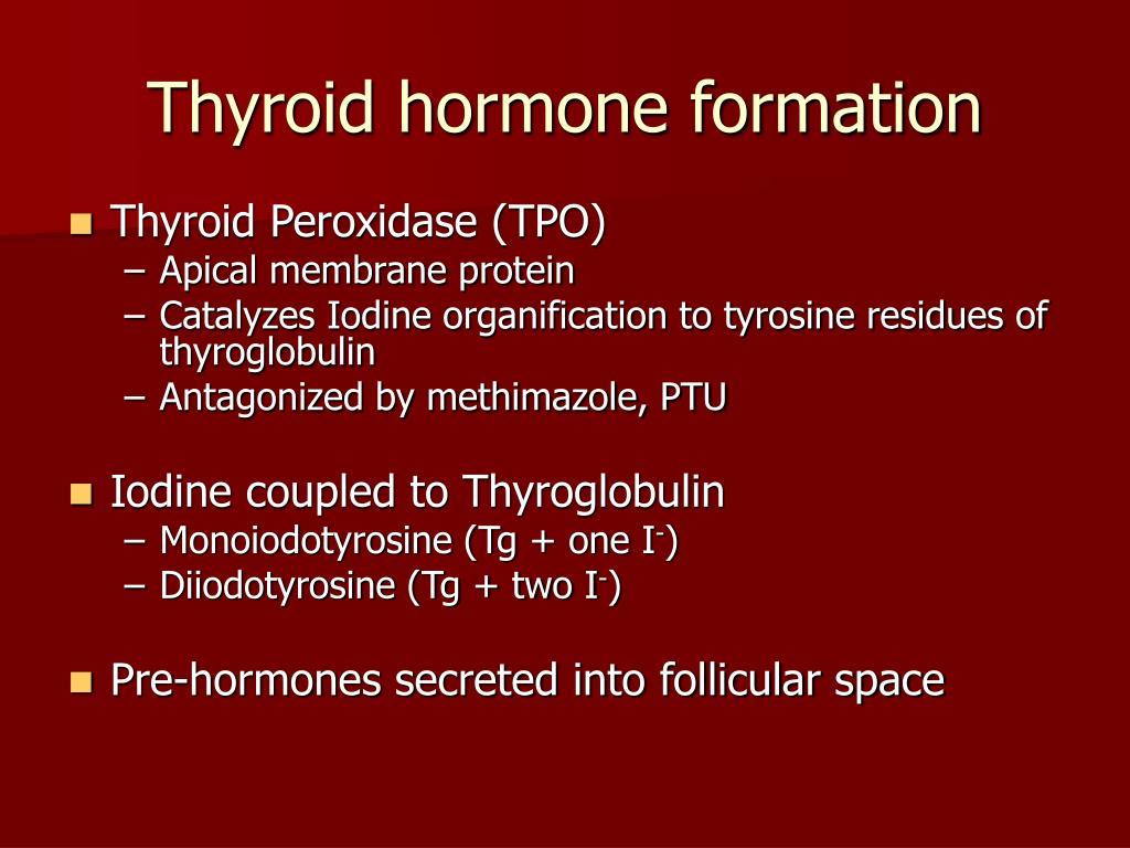 Thyroid hormone formation