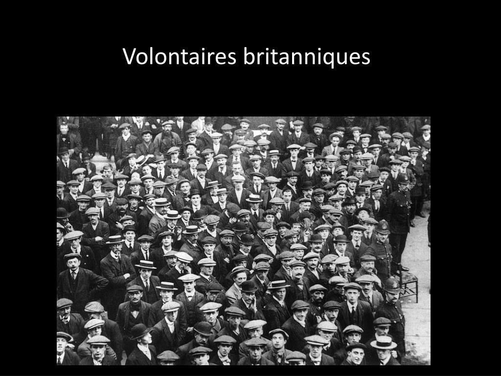 Volontaires britanniques