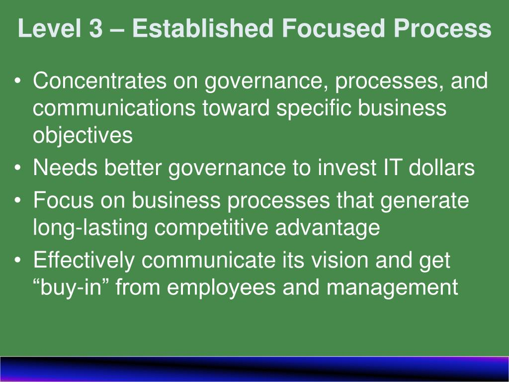 Level 3 – Established Focused Process