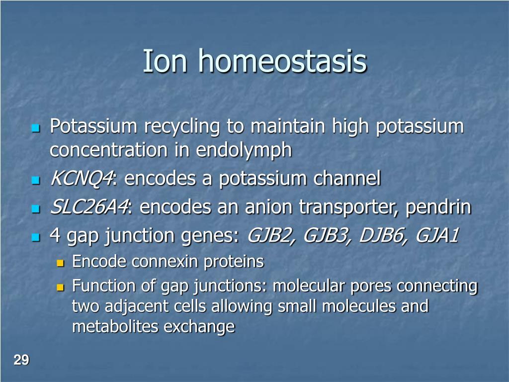 Ion homeostasis