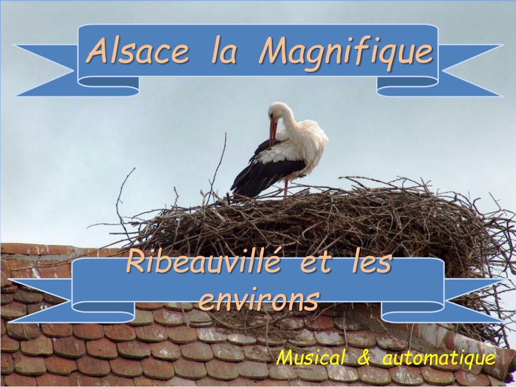 Alsace  la  Magnifique