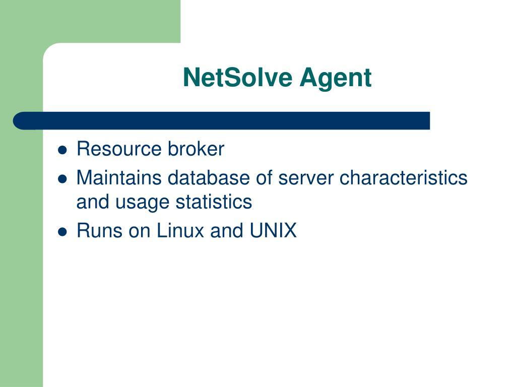 NetSolve Agent