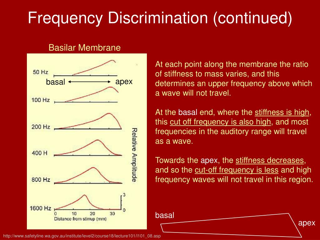 Frequency Discrimination (continued)