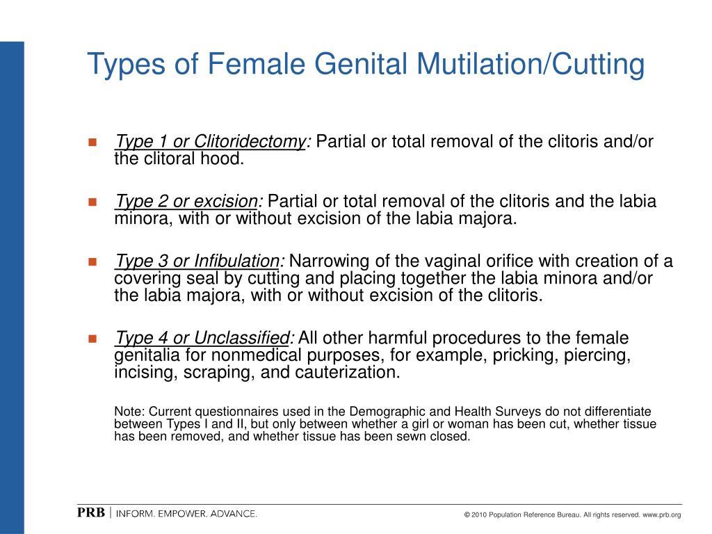 female circumcision essay example Female circumcision essay female circumcision is a controversial topic in society , female circumcision essay example.