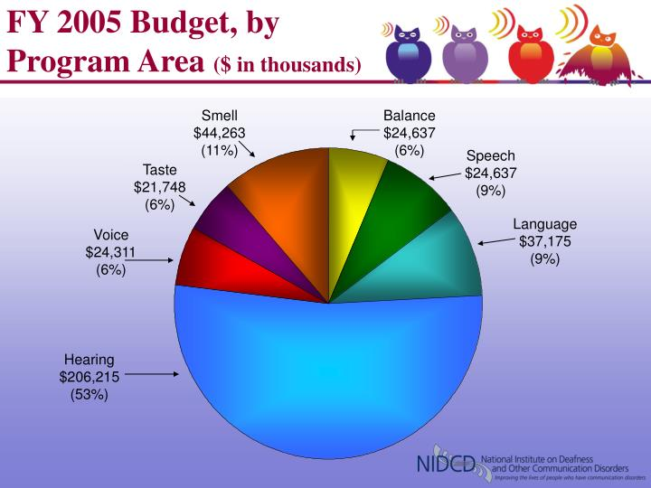 Fy 2005 budget by program area in thousands