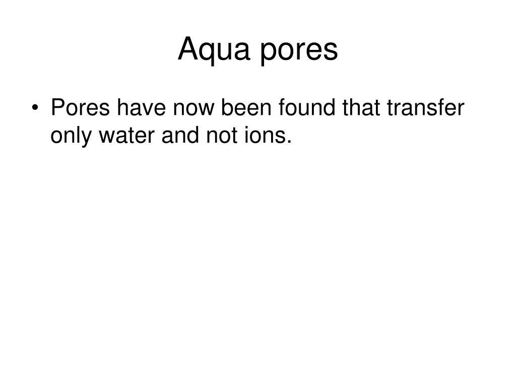 Aqua pores