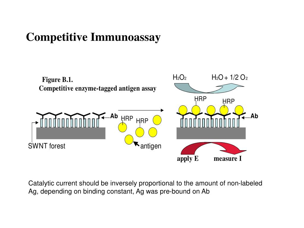Competitive Immunoassay