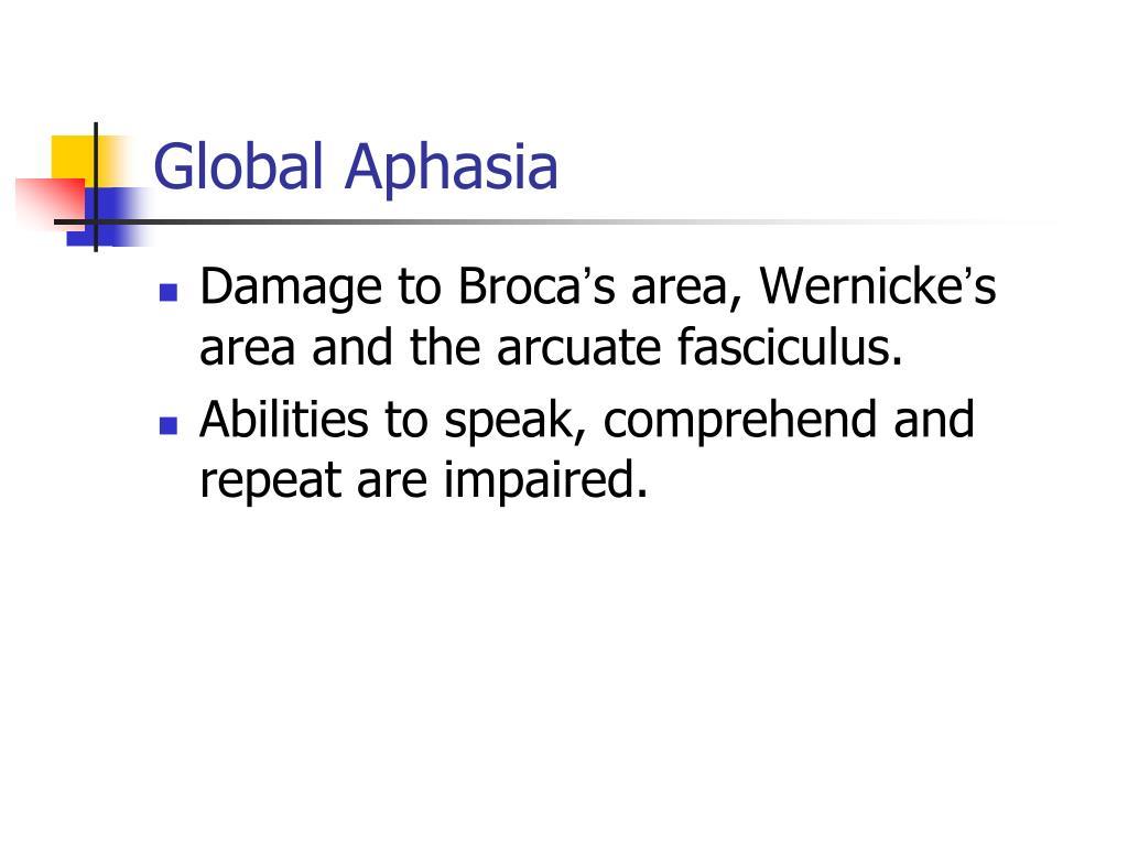 Global Aphasia
