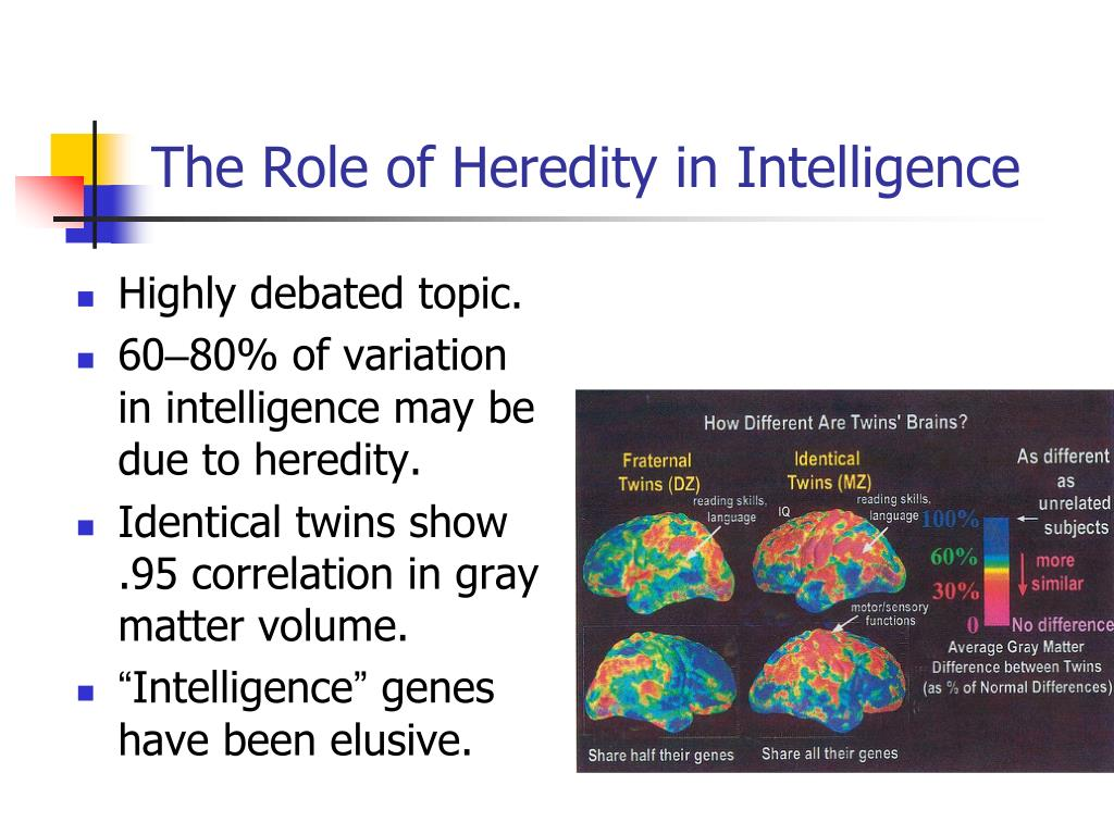 The Role of Heredity in Intelligence