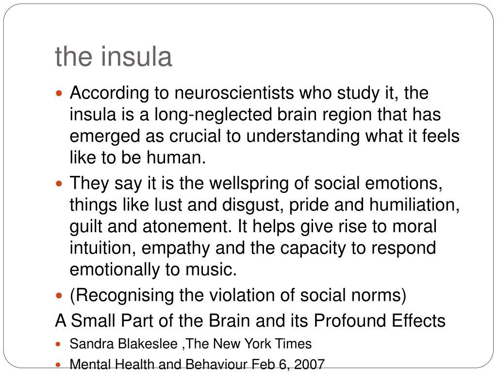 the insula