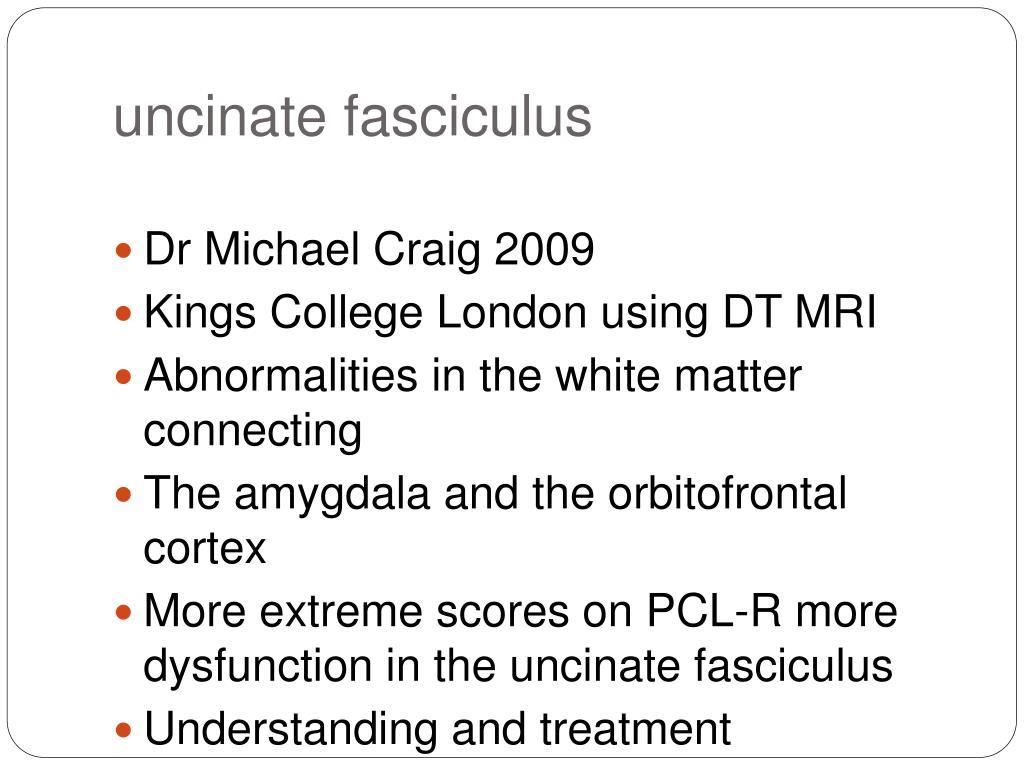 uncinate fasciculus