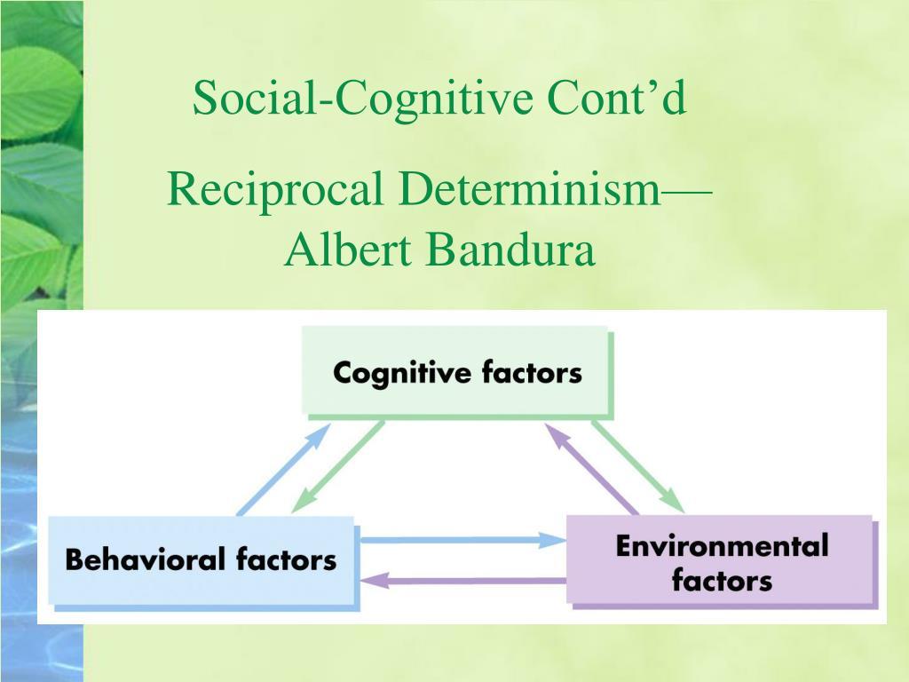 Social-Cognitive Cont'd