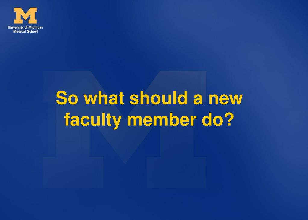 So what should a new faculty member do?