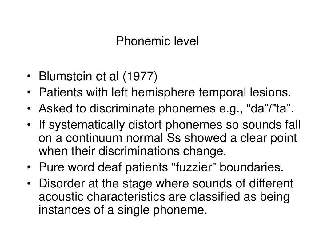 Phonemic level