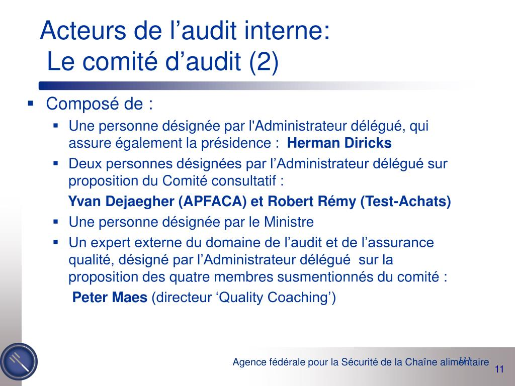 Acteurs de l'audit interne: