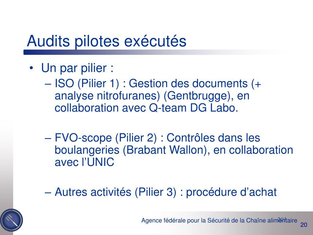 Audits pilotes exécutés