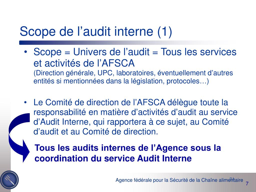 Scope de l'audit interne (1)
