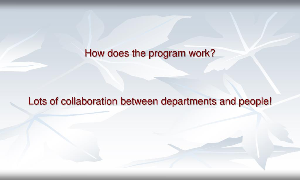 How does the program work?