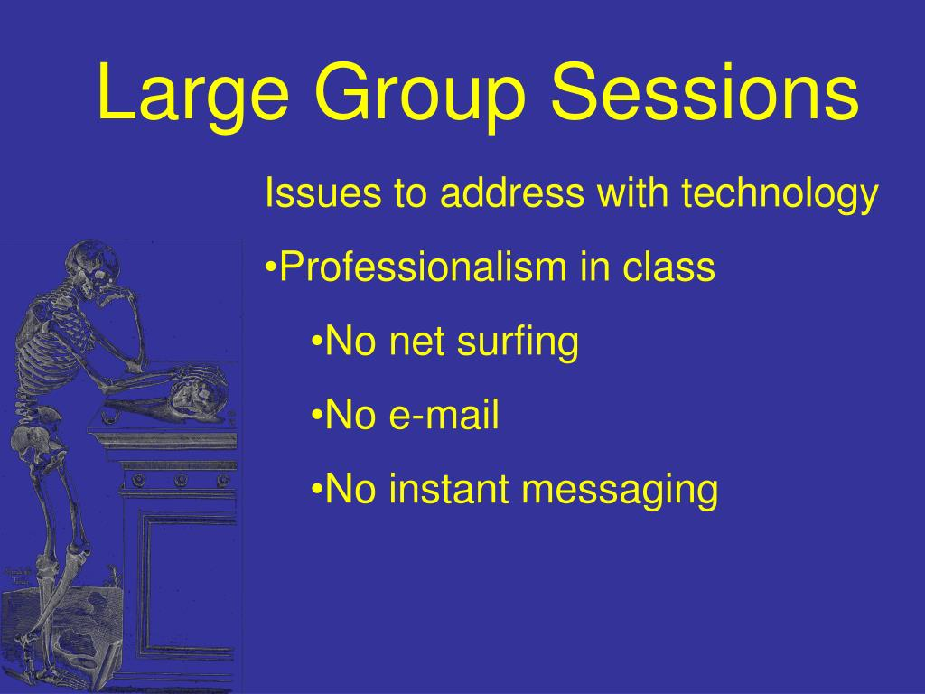 Large Group Sessions
