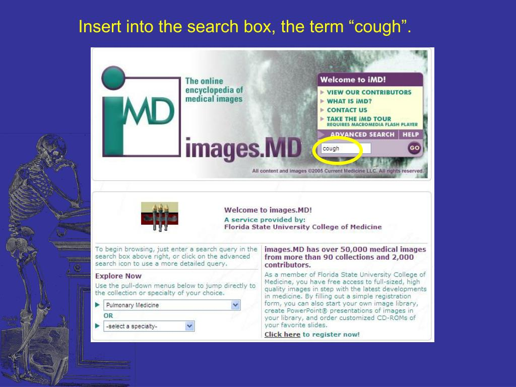 """Insert into the search box, the term """"cough""""."""