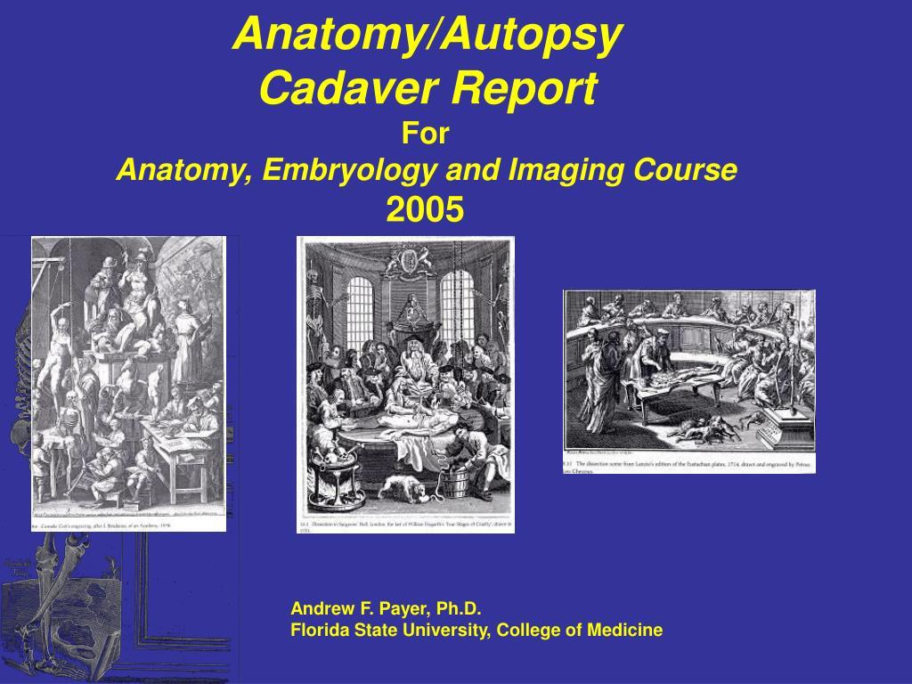 Anatomy/Autopsy