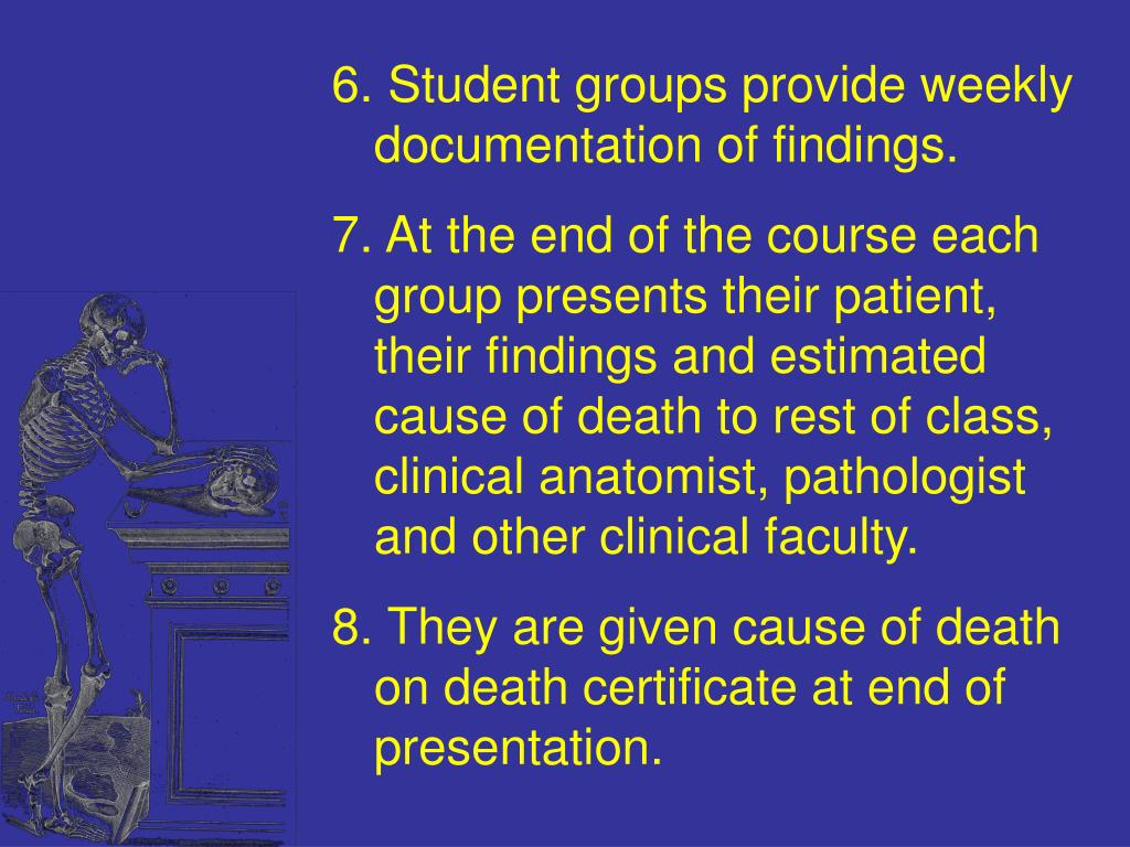 Student groups provide weekly documentation of findings.