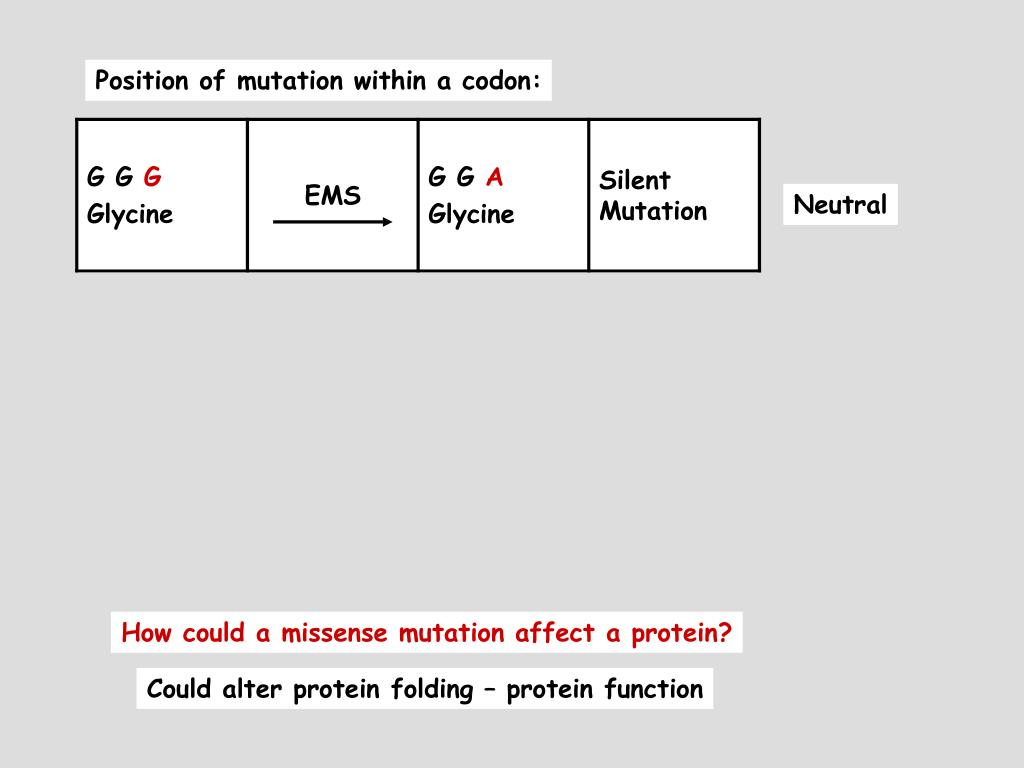 Position of mutation within a codon: